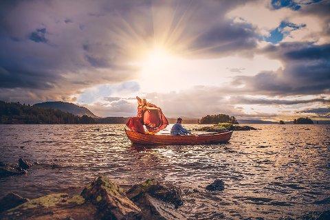 ALT KLAFFET: Ingenting lå til rette for at det skulle bli en bra fotodag, men plutselig kom sola. Da klarte fotograf Bjørn Tore Stokke å fange dette øyeblikket.