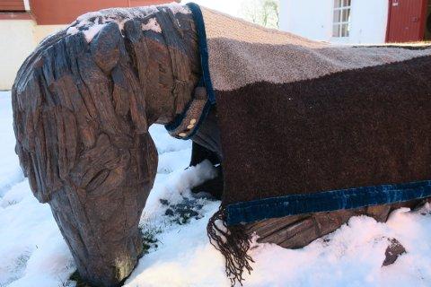 """HESTEDEKKEN: Taran Anne Sæther har strikket hestedekken til """"Etter skeid""""."""