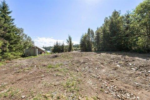 TIL SALGS: Over fire mål med tomt i enden av Kalvsjøtjernet.