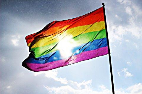 FIKK JA: Vemund Viken foreslo for halvannet år siden at Gran kommune skal heise regnbueflagget på rådhuset under Hadeland Pride. Nå har flertallet i kommunestyret sagt ja.