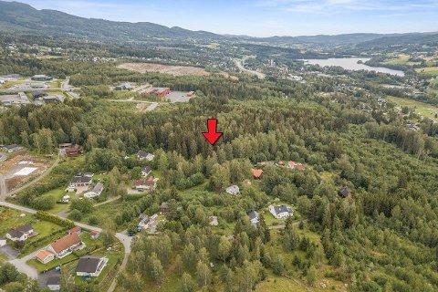 TOMTA: Den røde pila markerer hvor den 40 mål store tomta ligger. Til høyre i bakgrunnen ligger Jaren og Jarenvatnet.