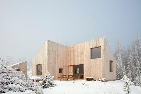 SOLGT: Mandag ettermiddag fikk nye eiere, en barnefamilie, tilslaget på denne hytta.