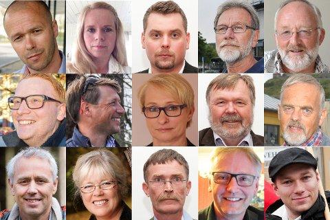 SKAL STYRE HALDEN: Her er 15 av de 39 politikerne som utgjør det nye kommunestyret i Halden.