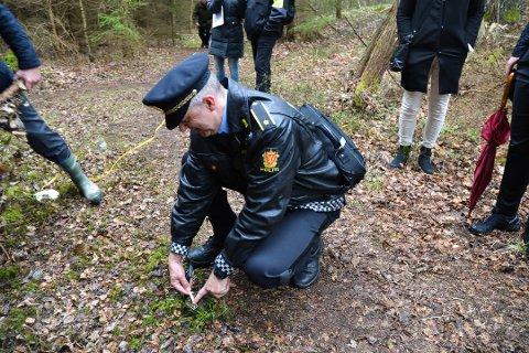 MÅLTE STUBBER: Under rettssaken var det befaring i Eskevikskogen hvor politietterforsker Frode Sivertsen målte stubber. Nå er Ole Kristian Sørlie dømt for skadeverk i denne skogen.