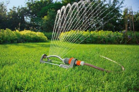 VANNINGSFORBUD: Det er innført vanningsforbud i Halden. og bryter du dette kan du bli ilagt bot.