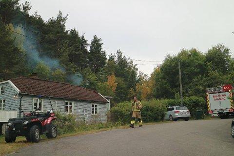 Det er meldt om røk på Sauøya i Halden. (Foto: Johnny Larsen)