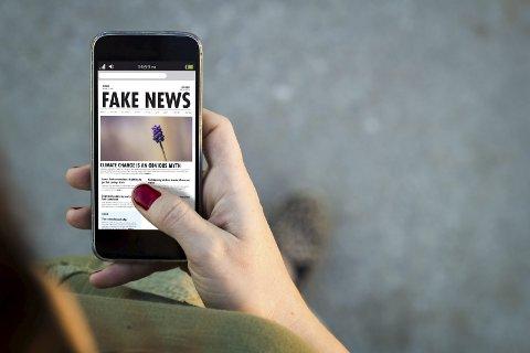 Lar du deg lure? – Nettet brukes til både svindel, manipulasjon og falske nyheter, skriver Hanne Lund-Nilsen i dagens Signert. Illustrasjonsfoto: Colourbox