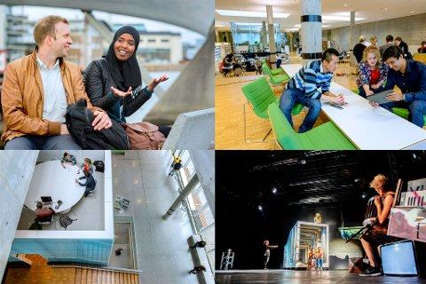 KLARE FOR Å GI RÅD OM ÅPNING: I en debatt i Dagsnytt 18 på NRK mandag om åpning av lesesaler sa Forland at de er klare for å gi råd om at det er på tide å åpne opp litt på universiteter og høyskoler.