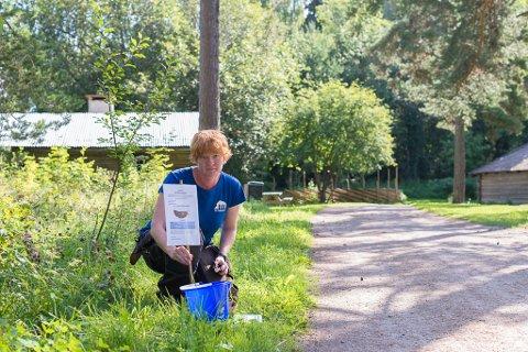 KRIG: Hildur Hauksdóttir fra urtehagen på Domkirkeodden håper folk bruker bøtte, saks, spade og engangshansker i kampen mot brunskogsneglene.