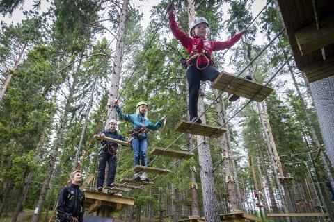 Populært: Klatreparker er populært. På Helgøya (bildet) hadde de 15.000 besøkende i fjor. Nå vil de merke at det også er og blir klatrepark på Gjøvik og i Hamar.