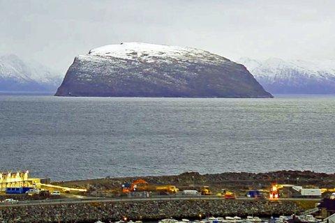 I HVITT: Håja i vinterskrud med snø på toppen.
