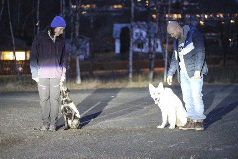 Hardanger Hundeklubb: Elin Lervik og Tore Vinessaman med Nala og Sansa. foto: synnøve nyheim