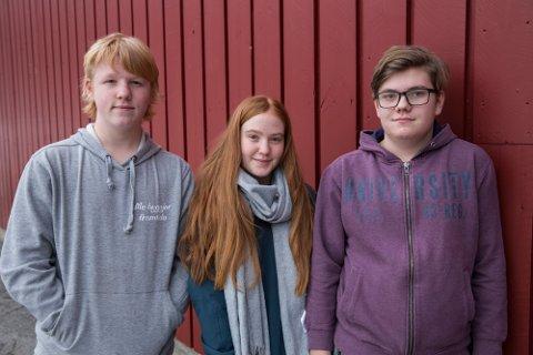 Lægreid skule er representert av Torstein Wathne, Kristoffer Andre Holsen og Emilie Viveli Tveit.