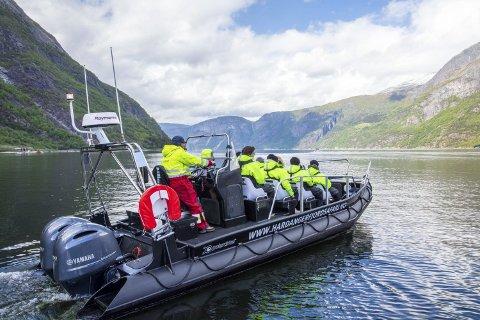 Hardanger Fjordsafari testa marknaden i 2017 og hadde full sesong i 2018. Helge Vik og Lars Inge Thorset driv ilag.