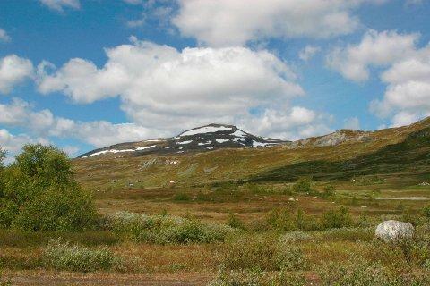 15. og 16. juni arrangerer Ullensvang fjellstyre fjellhelg i Isdalen. Her Ishaug i Isdalen. Arkivfoto