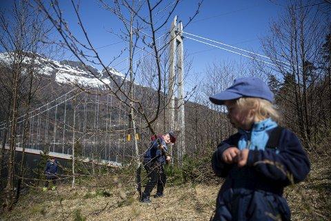 POTENSIELLE HARDINGPULSARAR: Knut Djønne (6) og Leif Edward Bech Jordal (2) er ivrige og flinke dugnadsarbeidarar.