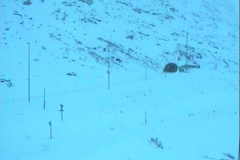 NY SNØ: Vinteren tar til i fjellet. I natt ble det registrert 20 centimeter nysnø i fjellene på Haukeli. Foto: Skjermgrabb fra Statens vegvesen sitt webkamera på Haukeli.