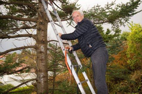 LIKER TRÆR:  Gunnar Johan Løvvik (70) er pensjonist og liker å beskjære kvister, trær og busker. Mye av tiden hans har gått med til å skrive bok.