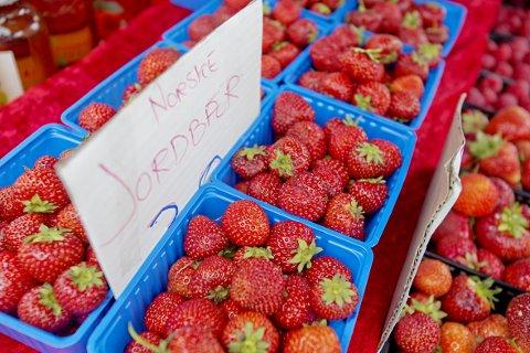 FRISTENDE: Nå varsler jordbærbøndene at de norske bærene snart er på vei.