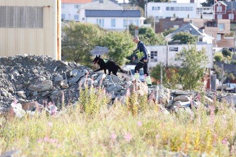 SØK: Politiet søker etter den savnede med letemannskaper og hunder både på land og i strandsonen rundt Bakarøy.