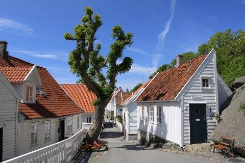 Foreningen Gamle Skudeneshavn får Riksantikvarens kulturminnepris 2018.