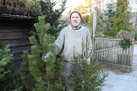 Furu eller norsk gran? Det er fortsatt det eneste som er juletre for mange, forteller Kjell Olav Ebne.