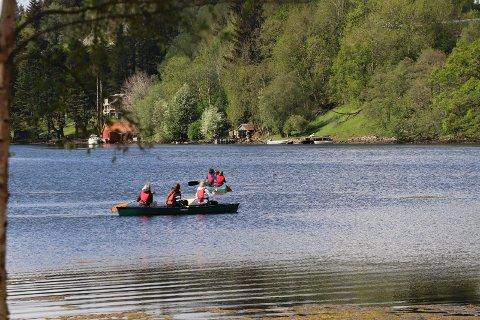 24052019:Skeisvang-elever plukker Stillehavsøsters: Med kano  leter Skeisvang-elevene etter liv i fjæra kangs land i Førlandsfjorden