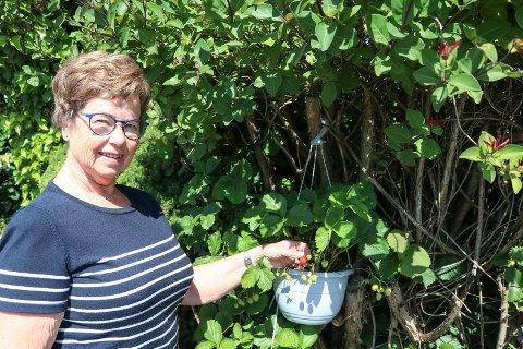 Gunnvor Midtgaard var sykepleier helt til hun var over 73 år gammel. Nå blir det pensjonisttilværelse og mer hagestell