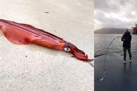 UVANLIG FANGST: Skapningen til venstre fikk Ruben Strand Hauge på fiskekroken lille julaften.