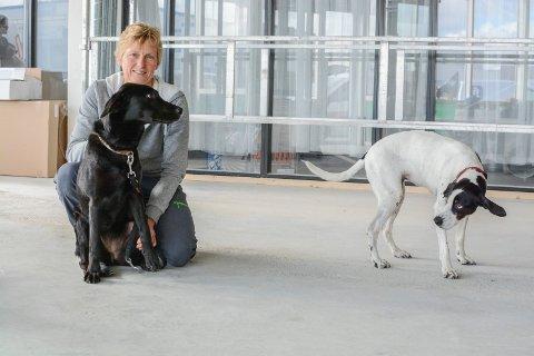 GJØR DET GODT: Kari Gundesø har 28 års erfaring som veterinær. Siden oktober 2016 har hun drevet sin egen smådyrklinikk på Raglamyr.