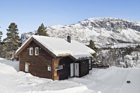 KJAPT SALG: Palmesøndag hadde eiendomsmegler Trude Lund Madtsen visning på denne hytta i Langedalen på Seljestad. Dagen etter var den solgt, til over prisantydning.