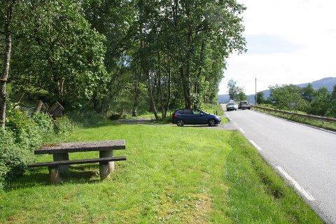 VEG OG TUNNEL: Her, ved rasteplassen på Fv. 46 mellom Sandeid og Vikedal vil den nye tunnelen koma – litt opp i terrenget etter den føreløpige planen. Nå skal Norconsult utarbeida reguleringsplan.