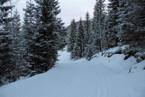 Løypenettet i Tovåsen er fantastisk. Å komme seg ut på ski er et glimrende innskudd på kontoen for folkehelse.