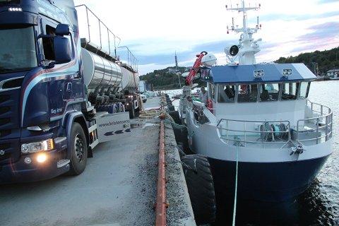 Rundt 30.000 rensefisk ble lastet fra tankbil, til tankene i om bord på M/S Skarsfjord.
