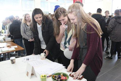 KUNNSKAP: Sofie Nilssen, Erika Adolfsen og Mia Adolfsen sjekker naturfagkunnskapen på jobbmesse ved SVS: Foto: Jarl G. Sandholm