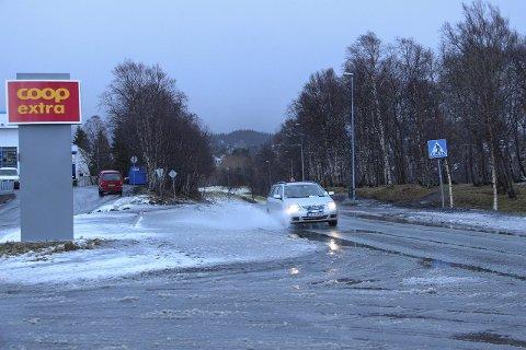 Det er duket for regn hele neste uke. Er de våren som er på vei? Foto: Rune Pedersen