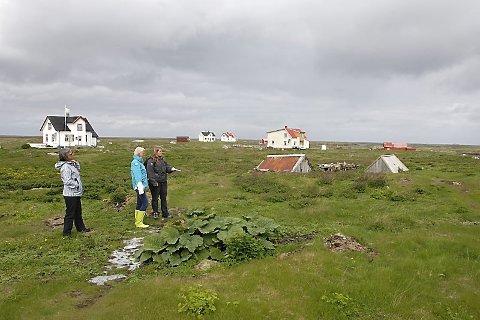 FØRST I NORGE: Vegaøyan verdensarv er sammen med Bergkunsten Alta og Vestnorsk fjordlandskap ved Geirangerfjorden de første i Norge som får autoriasjonen.  Bildet er fra Lånan.