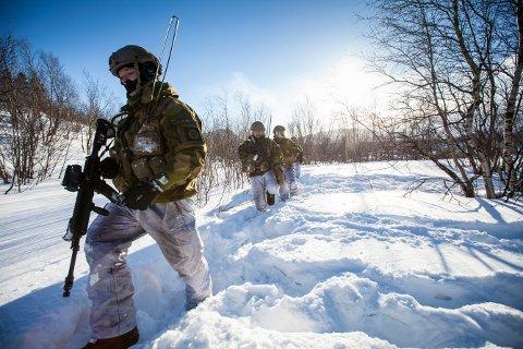ØVER: HV-14 bidrar med den landmobile innsatsstyrken Heron under øvelse Cold Response i Trøndelag. I tillegg skal HV-14 lede flere områder (kompanier) fra Trøndelag HV-12. Illustrasjonsbilde. Foto: Kristian Kapelrud/Forsvaret