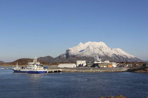 MERE BÅT: Marine Harvest fabrikkanlegg på Hestøya i Herøy kan få besøk av flere båter i framtiden. Foto: Jarl G. Sandholm