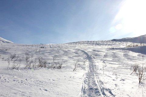 Skutertur fra Vefsn til Hattfjelldal. Skuter, scooter, snøskuter, skuterløyper