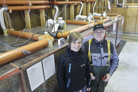 SELVGJORT: Prosjektleder og forsker Vibeke Lind sammen med forsøkstekniker Robert Sturitis foran den selvlagde «sauelaboratoriet»