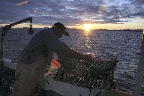 NOK ER NOK: Midt Helgeland Fiskarlag ønsker ingen flere nyetableringer i oppdrettsnæringen før problemet med lakselus er løst. Illustrasjonsfoto: Jarl G. Sandholm