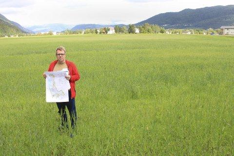 Jordbruk: Helge Lynghaug holder et kart over Mosjøen som ligger ved forsalg til ny kommunedelplan. Han står dessuten midt i jordbrukslandet på Øya som kan bli berørt av planen. Foto: Jon S. Linga