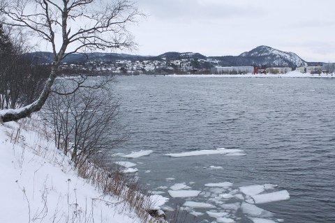 LAKSELUS: Villaks kan være truet dersom et forslag fra fiskerimminister Per Sandberg blir vedtatt. Her ser vi elva Vefsna nær utløpet i Mosjøen. Foto: Jon Steinar Linga