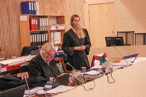 Malene Holand og Christian Wiig forsvarte den tiltalte familiefaren i Alstahaug tingrett.