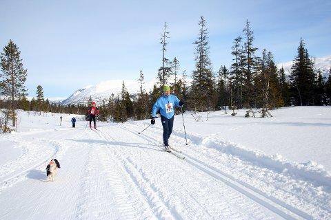 HJARTFJELLRENNET: Slik var det under Hjartfjellrennet i 2009, og slik håper arrangøren det blir 12. mars i år også.