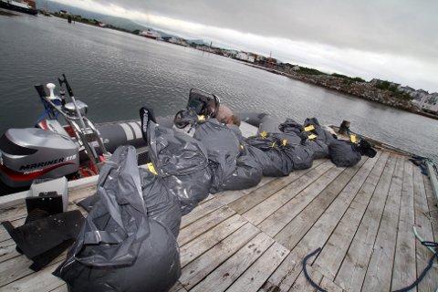 GARN: Søndag ble sommerens tre første ulovlige laksegarn fisket opp av Vefsnfjorden.