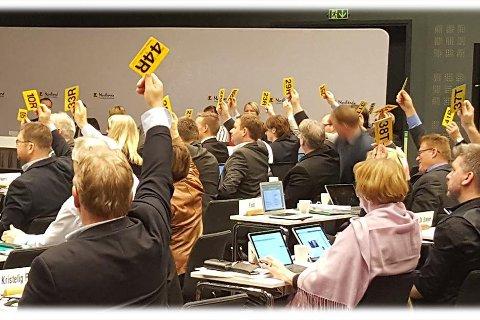 VEIEN VIDERE: PÅ møtet i Mosjøen neste uke skal fylkestinget i Nordland ta stilling til hvordan de skal organisere seg i  framtida.