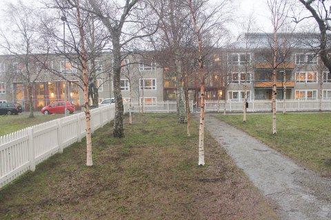 VIKARBRUK: Konstali Helsenor AS vil ha informasjon  om kommunens helsebemanningsutbetalinger. Bildet viser Parken bo- og servicesenter i Mosjøen.
