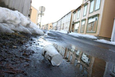 I dag må frivillige som ønsker å rydde langs trafikkerte veier ha kurs først.